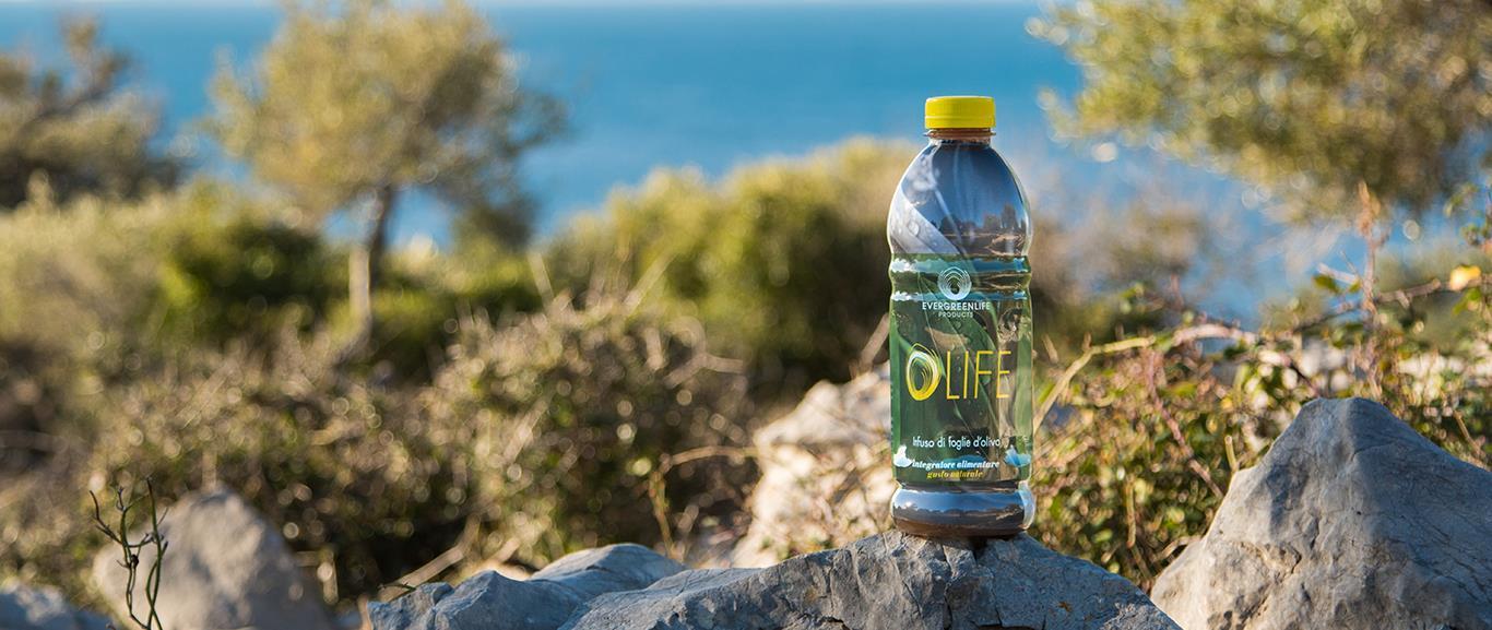 Olife - Olivum